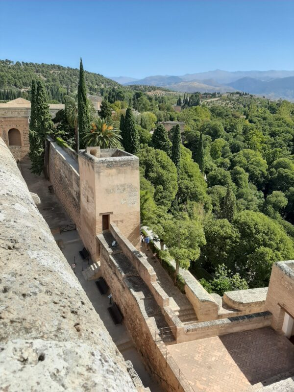 Views from the Alcazaba.