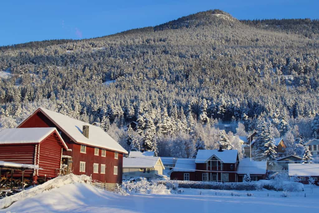 DIY Norway in a Nutshell: A Budget Traveller's Guide